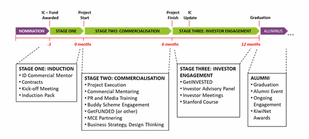 Emerging Innovator Programme Structure